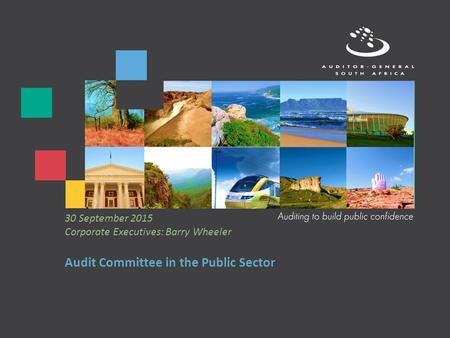 Audit Committee in the Public Sector 30 September 2015 Corporate Executives: Barry Wheeler.