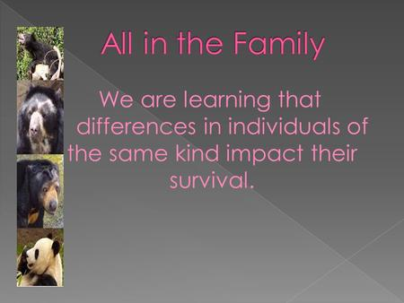 We are learning that differences in individuals of the same kind impact their survival.