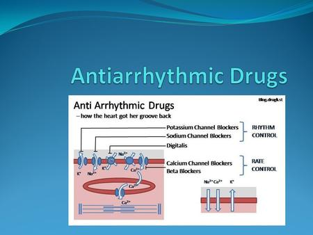 Antiarrhythmic Drugs.