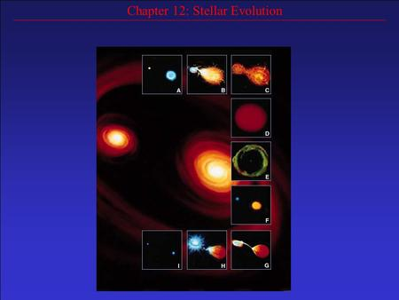 Chapter 12: Stellar Evolution. Most stars spend a majority of their lives (~90%) on the main sequence (about 10 billion years for our Sun) Virtually all.