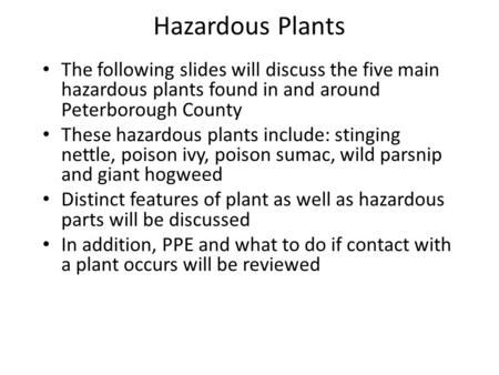 Hazardous Plants The following slides will discuss the five main hazardous plants found in and around Peterborough County These hazardous plants include: