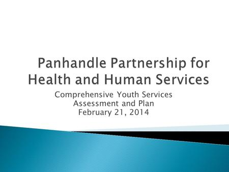 Comprehensive Youth Services Assessment and Plan February 21, 2014.