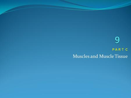 Muscles and Muscle Tissue P A R T C. Muscle Tone Muscle tone: Is the constant, slightly contracted state of all muscles Keeps the muscles firm, healthy,