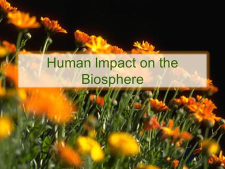 Human Impact on the Biosphere. As the human population grows, the demand for Earth's resources increases.