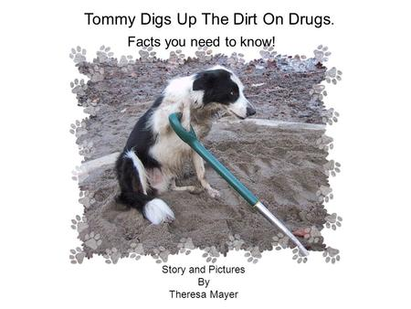 Tommy Digs Up The Dirt On Drugs. Facts you need to know! Story and Pictures By Theresa Mayer.