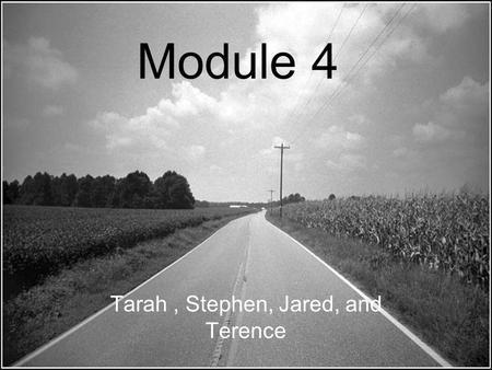 Module 4 Tarah, Stephen, Jared, and Terence. Risk Assessment Risk –the chance of injury, damage, or loss. Chance –the possibility of something going wrong.