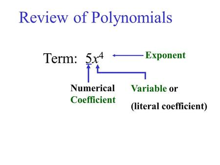 Term: 5x 4 Numerical Coefficient Variable or (literal coefficient) Exponent Review of Polynomials.