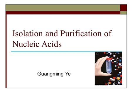 Isolation and Purification of Nucleic Acids