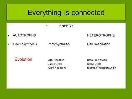 Everything is connected ENERGY AUTOTROPHSHETEROTROPHS ChemosynthesisPhotosynthesisCell Respiration Evolution Light ReactionBreak down food Calvin Cycle.