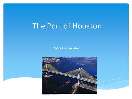 The Port of Houston Dulce Hernandez.  The Port of Houston – Wetlands Ecosystem  Home of birds and fish. Birds such as; white pelicans, laughing seagulls,