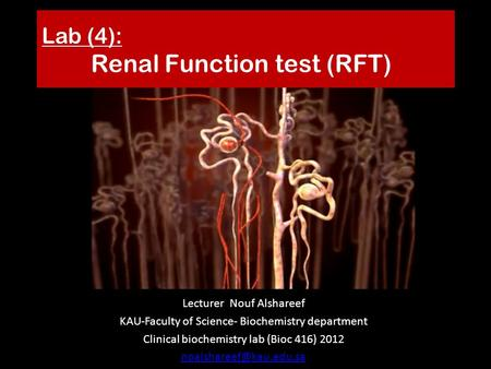 Lab (4): Renal Function test (RFT) Lecturer Nouf Alshareef KAU-Faculty of Science- Biochemistry department Clinical biochemistry lab (Bioc 416) 2012