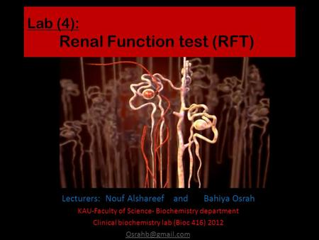 Lab (4): Renal Function test (RFT) Lecturers: Nouf Alshareef and Bahiya Osrah KAU-Faculty of Science- Biochemistry department Clinical biochemistry lab.