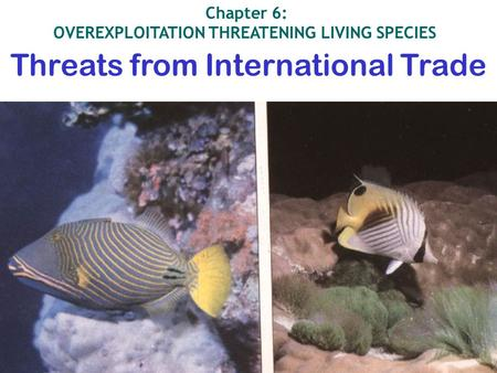 Threats from International Trade Chapter 6: OVEREXPLOITATION THREATENING LIVING <strong>SPECIES</strong>.