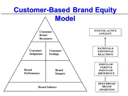 an overview of the problems of brand management and brand equity Brand equity three ways of viewing brand equity building and managing brand equity.