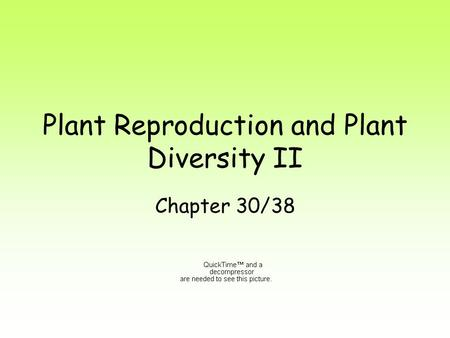 Plant Reproduction and Plant Diversity II Chapter 30/38.