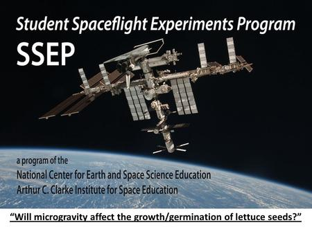 """Will microgravity affect the growth/germination of lettuce seeds?"""