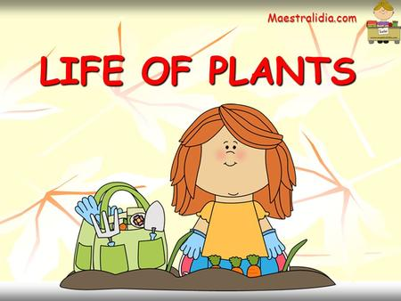 LIFE OF PLANTS LIFE OF PLANTS Maestralidia.com. What do plants need to grow ?