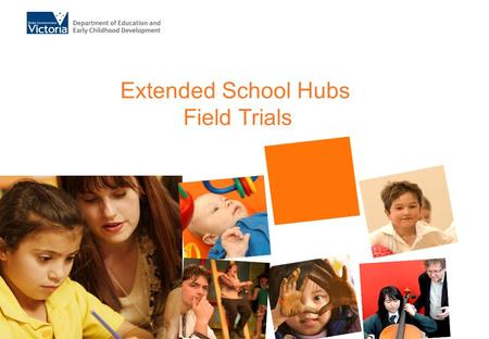 Extended School Hubs Field Trials. Number of partnerships by organisation type.