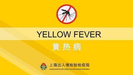 Yellow fever global threat jack woodall phd institute of for Bureau quarantine