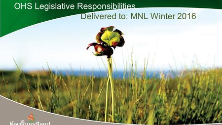 OHS Legislative Responsibilities Delivered to: MNL Winter 2016 1.