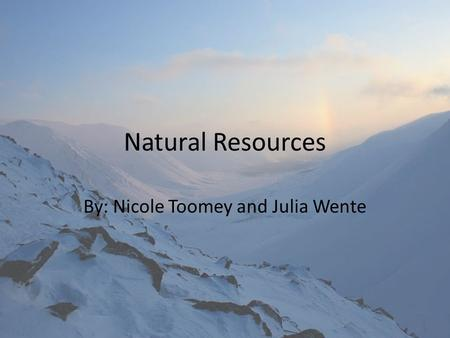 Natural Resources By: Nicole Toomey and Julia Wente.