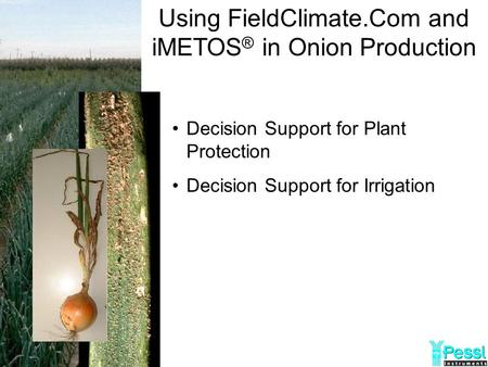 Using FieldClimate.Com and iMETOS ® in Onion Production Decision Support for Plant Protection Decision Support for Irrigation.