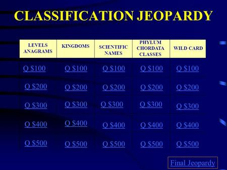 CLASSIFICATION JEOPARDY Q $100 Q $200 Q $300 Q $400 Q $500 Q $100 Q $200 Q $300 Q $400 Q $500 Final Jeopardy SCIENTIFIC NAMES KINGDOMS PHYLUM CHORDATA.