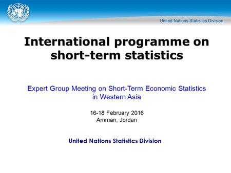 United Nations Statistics Division International programme on short-term statistics Expert Group Meeting on Short-Term Economic Statistics in Western Asia.