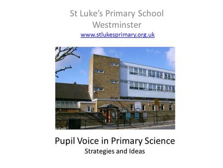St Luke's Primary School Westminster www.stlukesprimary.org.uk Pupil Voice in Primary Science Strategies and Ideas.