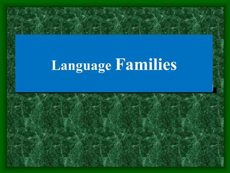 Language Families. Objectives Definition of language family Indo-European-languages Proto-Indo-European-languages.