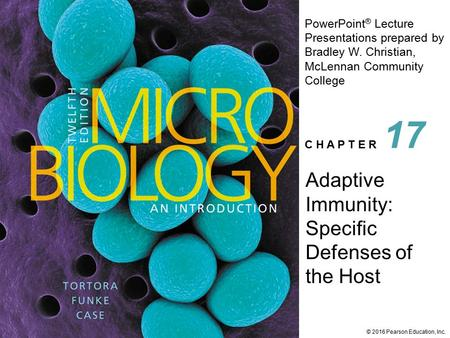PowerPoint ® Lecture Presentations prepared by Bradley W. Christian, McLennan Community College C H A P T E R © 2016 Pearson Education, Inc. Adaptive Immunity:
