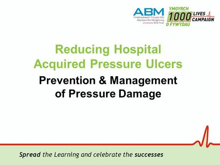 Spread the Learning and celebrate the successes Reducing Hospital Acquired Pressure Ulcers Prevention & Management of Pressure Damage.
