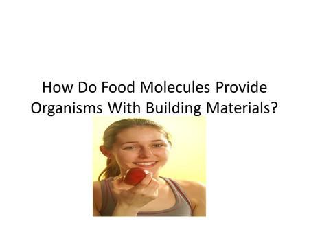 How Do Food Molecules Provide Organisms With Building Materials?