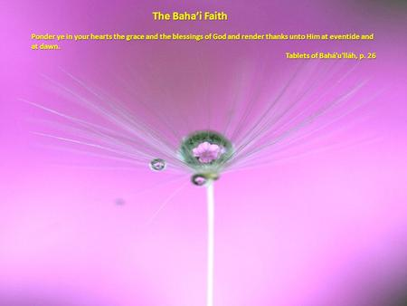 The Baha'i Faith Ponder ye in your hearts the grace and the blessings of God and render thanks unto Him at eventide and at dawn. Tablets of Bahá'u'lláh,