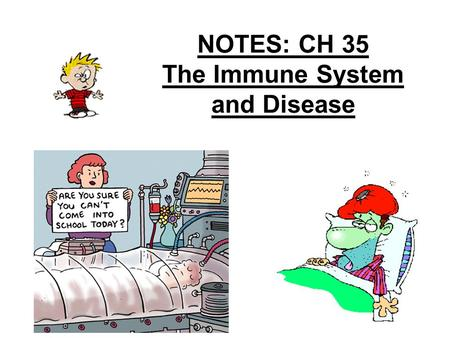 NOTES: CH 35 The Immune System and Disease. CH 35: Key Terms / Concepts Key Terms –Infectious disease –Pathogen –Antigen –Antibody –Immunity –Vaccination.