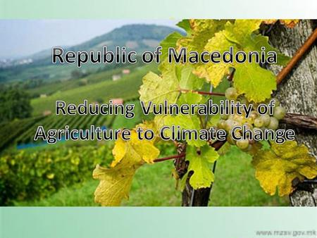 S. The importance of the Agriculture Sector  Agriculture plays an important role in the Macedonian economy and has a share of 18 percent in total employment.