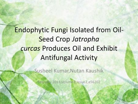 Endophytic Fungi Isolated from Oil- Seed Crop Jatropha curcas Produces Oil and Exhibit Antifungal Activity Susheel Kumar,Nutan Kaushik February 2013,Volume.