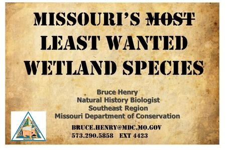 MISSOURI'S MOST least wanted Wetland species Bruce Henry Natural History Biologist Natural History Biologist Southeast Region Southeast Region Missouri.