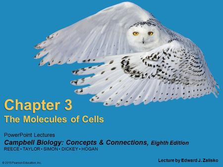PowerPoint Lectures Campbell Biology: Concepts & Connections, Eighth Edition REECE TAYLOR SIMON DICKEY HOGAN Chapter 3 Lecture by Edward J. Zalisko The.