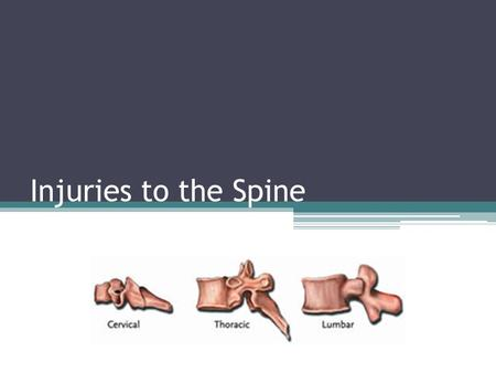 Injuries to the Spine.