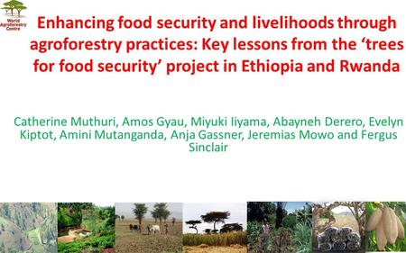 Enhancing food security and livelihoods through agroforestry practices: Key lessons from the 'trees for food security' project in Ethiopia and Rwanda Catherine.
