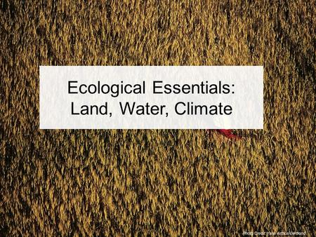 Photo Credit: Yann Arthus-Bertrand Ecological Essentials: Land, Water, Climate.