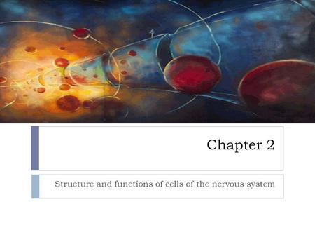 Chapter 2 Structure and functions of cells of the nervous system.