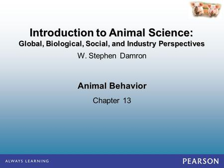 Animal Behavior Chapter 13 W. Stephen Damron Introduction to Animal Science: Global, Biological, Social, and Industry Perspectives.