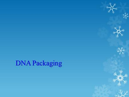DNA Packaging. Lecture Overview Structure of chromosomes and chromatin. DNA packing and histone modification.