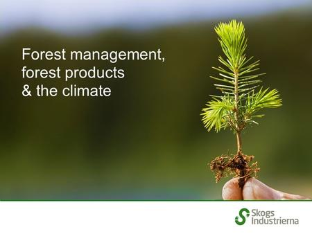 Forest management, forest products & the climate.