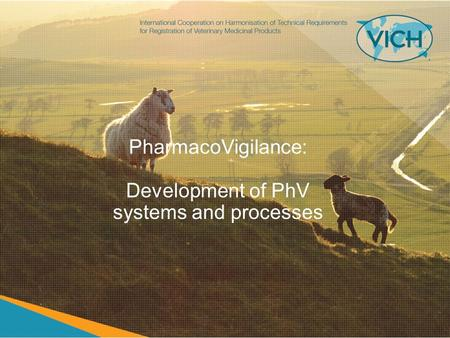 PharmacoVigilance: Development of PhV systems and processes.