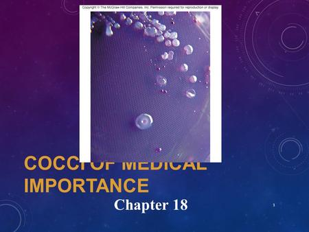 "COCCI OF MEDICAL IMPORTANCE 1 Chapter 18. COCCI Spherical shaped Both Gram+ and Gram- species Most significant infectious agents of humans Most are ""pyogenic"""