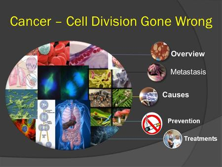 Overview Metastasis Causes Prevention Treatments Cancer – Cell Division Gone Wrong.