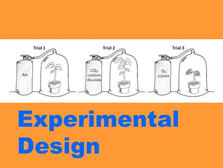 Experimental Design. Understanding how experiments are designed is an important aspect of your science education. Today, we will look at a few experiments.